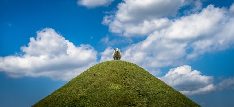 sheep-standing-on-top-of-a-hill-with-clouds-overhead