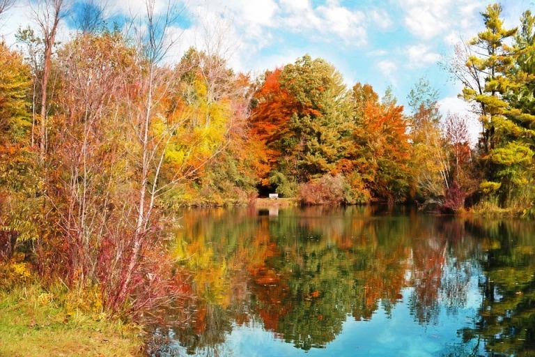autumn-986327_960_720