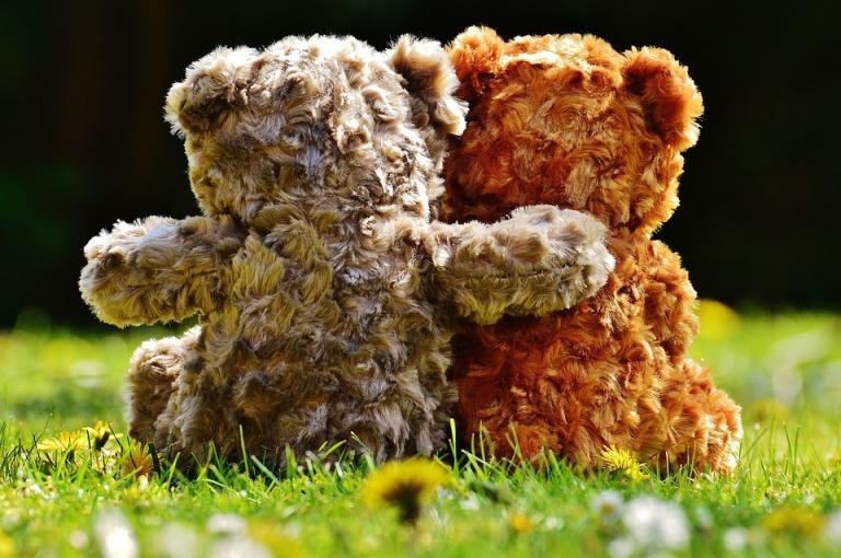 teddy-1361397_960_720