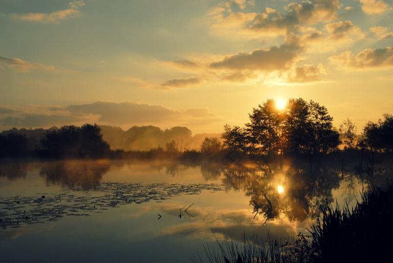 Morning_Silence_1.jpg