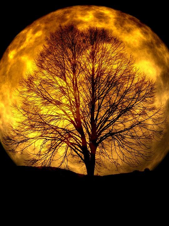moon-165487_960_720