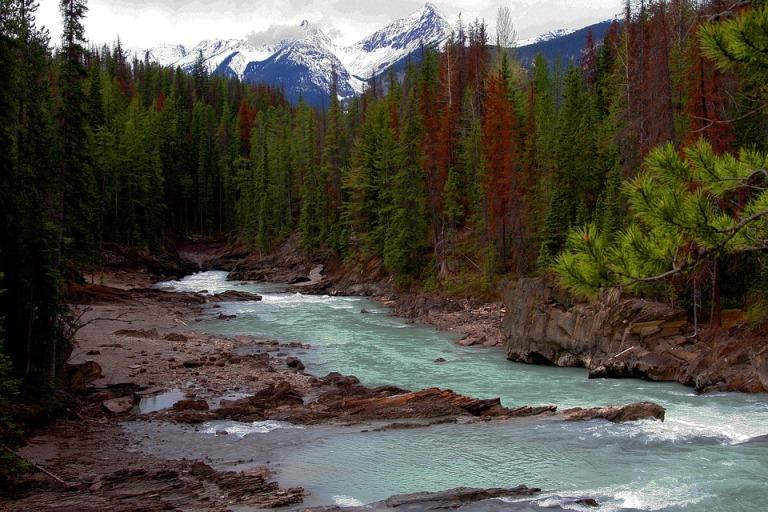 river-1602082_960_720