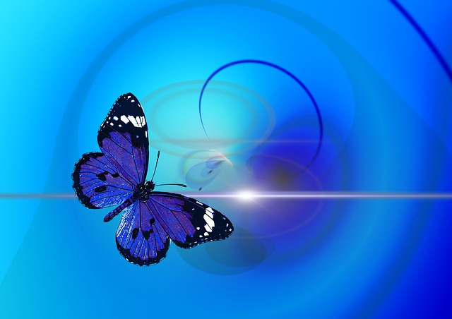 Modern Butterfly Background Animal Insect Abstract