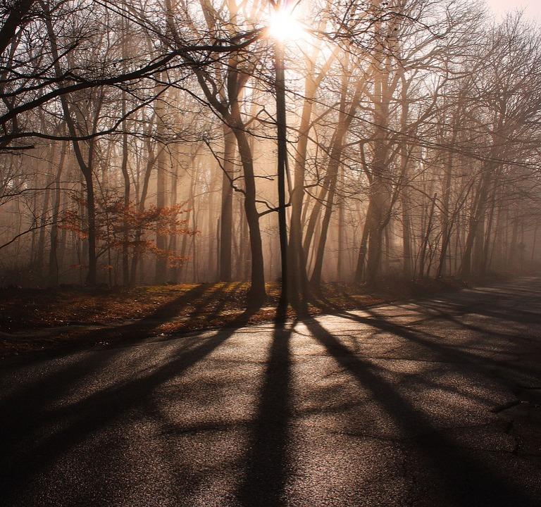 shadows-606011_960_720