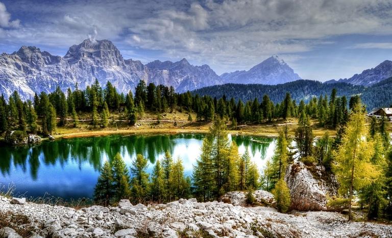 landscape-tree-nature-forest-rock-wilderness-1390517-pxhere.com.jpg