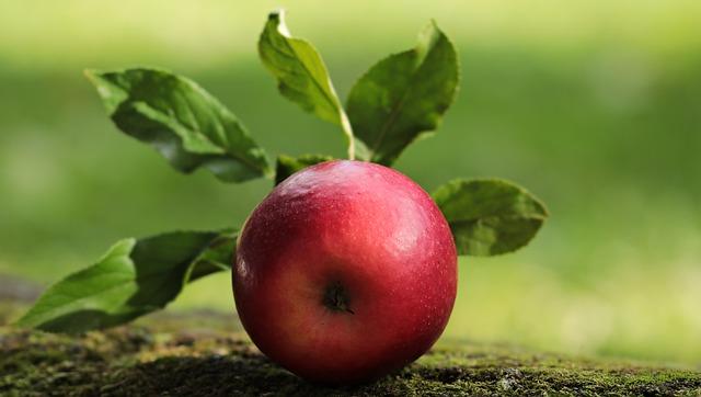 apple-2924531_640