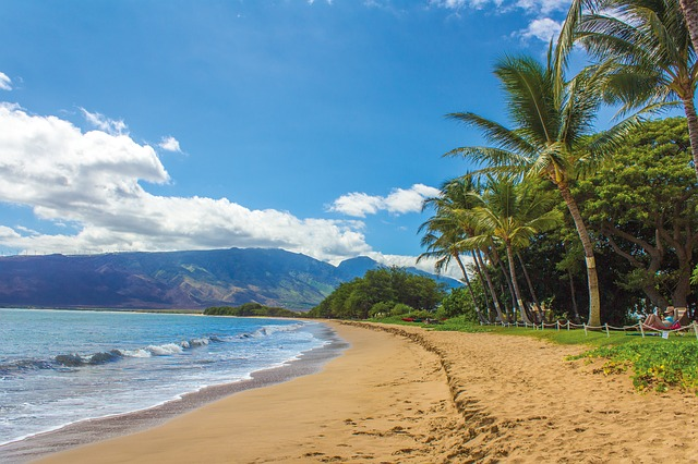 beach-1630540_640